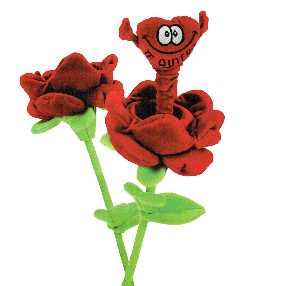 rosa merioneta te quiero