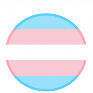 Movimiento Transexual